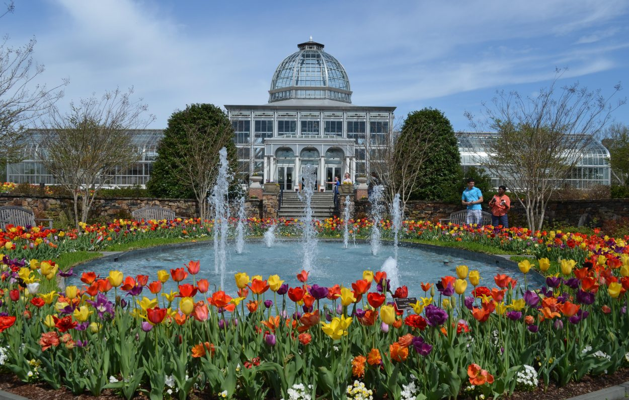 The Central Garden during a Million Blooms
