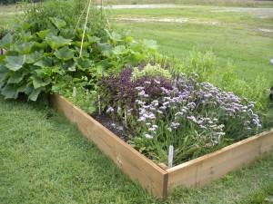 home demo garden