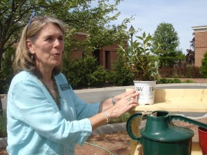 Debbe Peck offers some planting tips