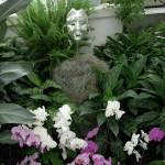 Frabel Glass masks with orchids at Lewis Ginter Botanical Garden's Conservatory
