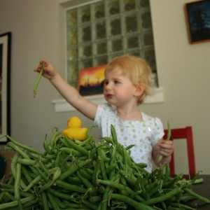 John Sarvay's daughter, Thea, with copious amounts of green beans.