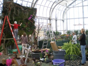 Sharon Carter (on ladder) Sue Thompson, Kathy Watson & Abbie Wharton creating a wall of the orchid forest