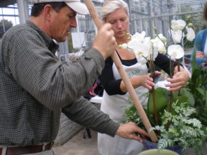 Assistant Executive Director Tom Brinda and volunteer Shelly Arthur pot Phalaenopsis orchids with Silver Lace Fern