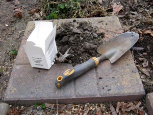 A soil test is a good place to start before you add fertilizer to your lawn.