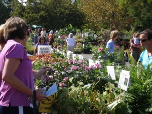 The Spring Plant Sale at Lewis Ginter Botanical garden