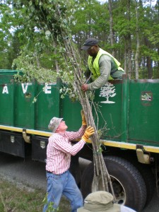 Volunteers loading the Sticks in the Davey Tree Expert Truck