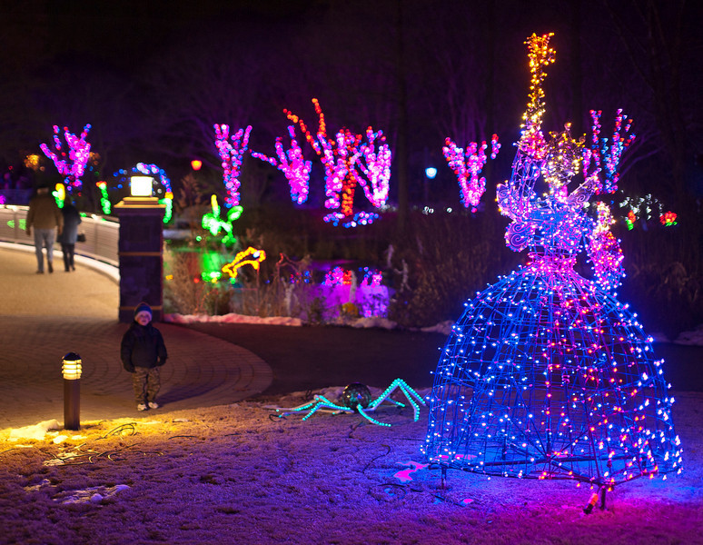 What's New at This Year's Dominion GardenFest of Lights? - Lewis ...