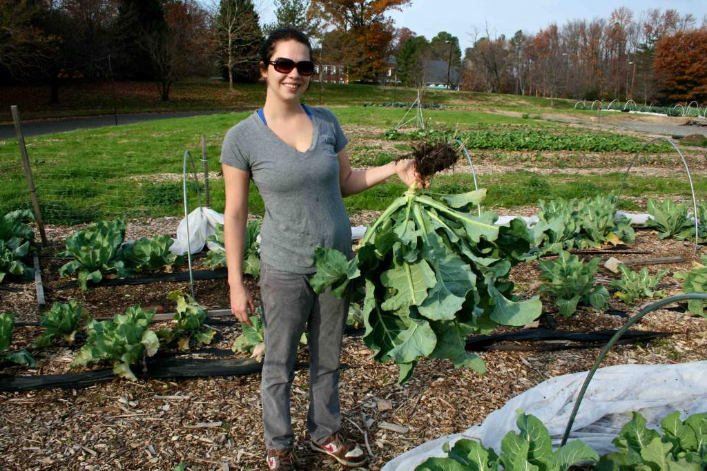 "Laura Schumm holds a ""big catch"" of cauliflower. Note the abundance of edible, but often ignored, leaves."