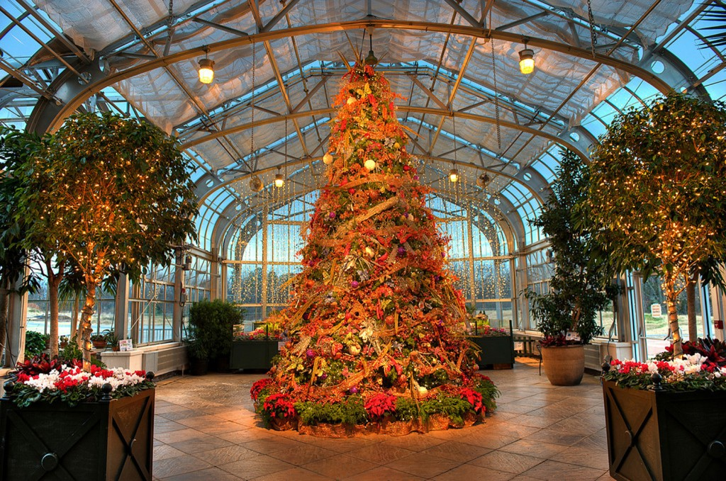 Grand Holiday Tree in the Conservatory North Wing.  Photo courtesy of Don Williamson.