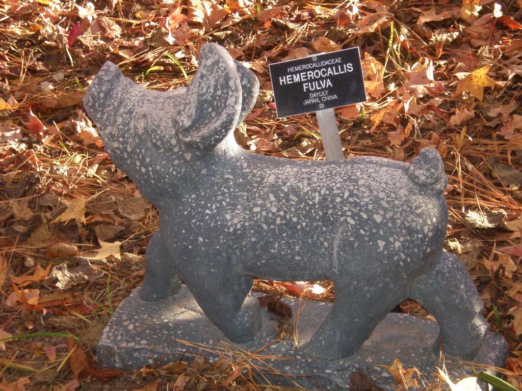 Pig on the jog...an ornamental pig at Lewis Ginter Botanical Garden