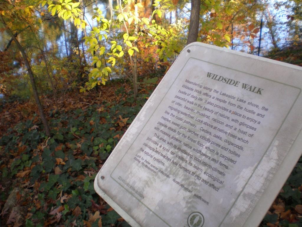 The Wildside Walk at Lewis Ginter Botanical Garden