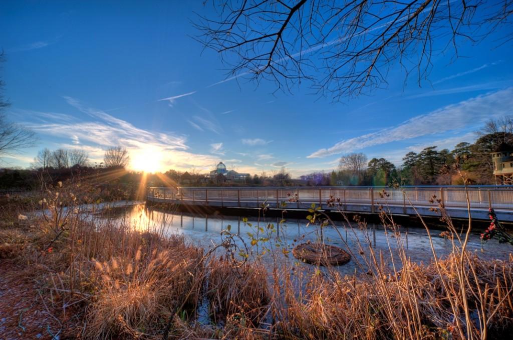 The Lotus Bridge at Lewis Ginter Botanical Garden