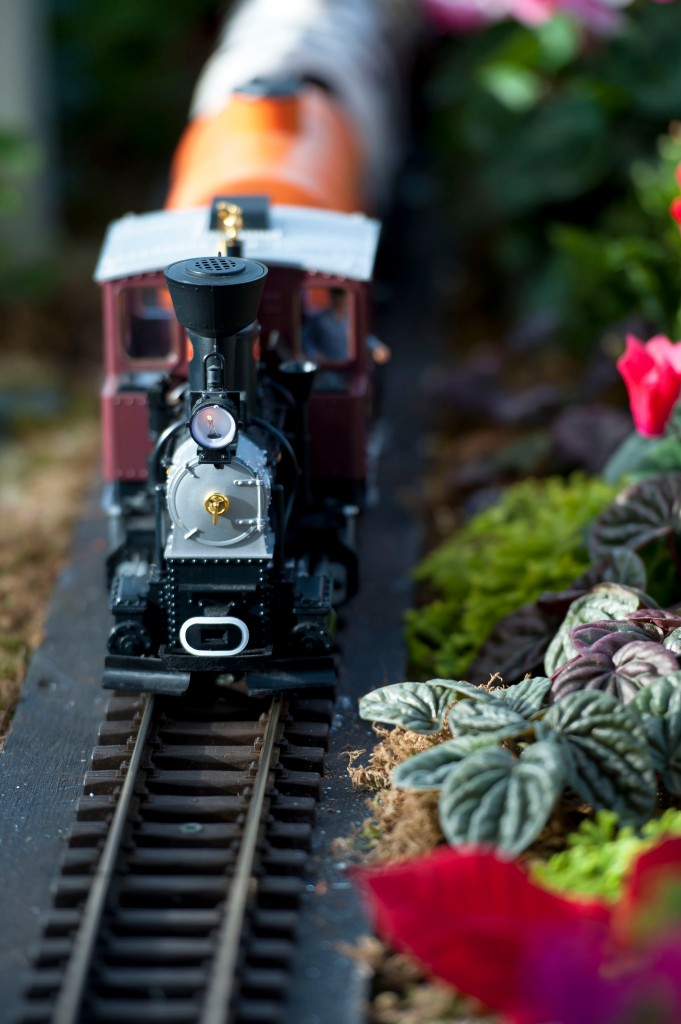 Lewis Ginter Botanical Garden GardenFest model train engine
