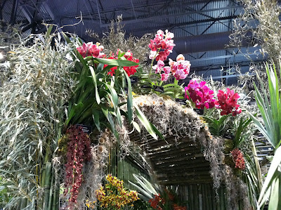 The American Orchid Society's display at the 2012 Philadelphia International Flower Show.