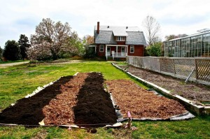 "The Locbury House expansion will feature no-till ""lasagna"" beds, elevating the planting level with piles of organic materials. This first bed illustrates the use of compost in the planting bed with wood chips on the pathways."