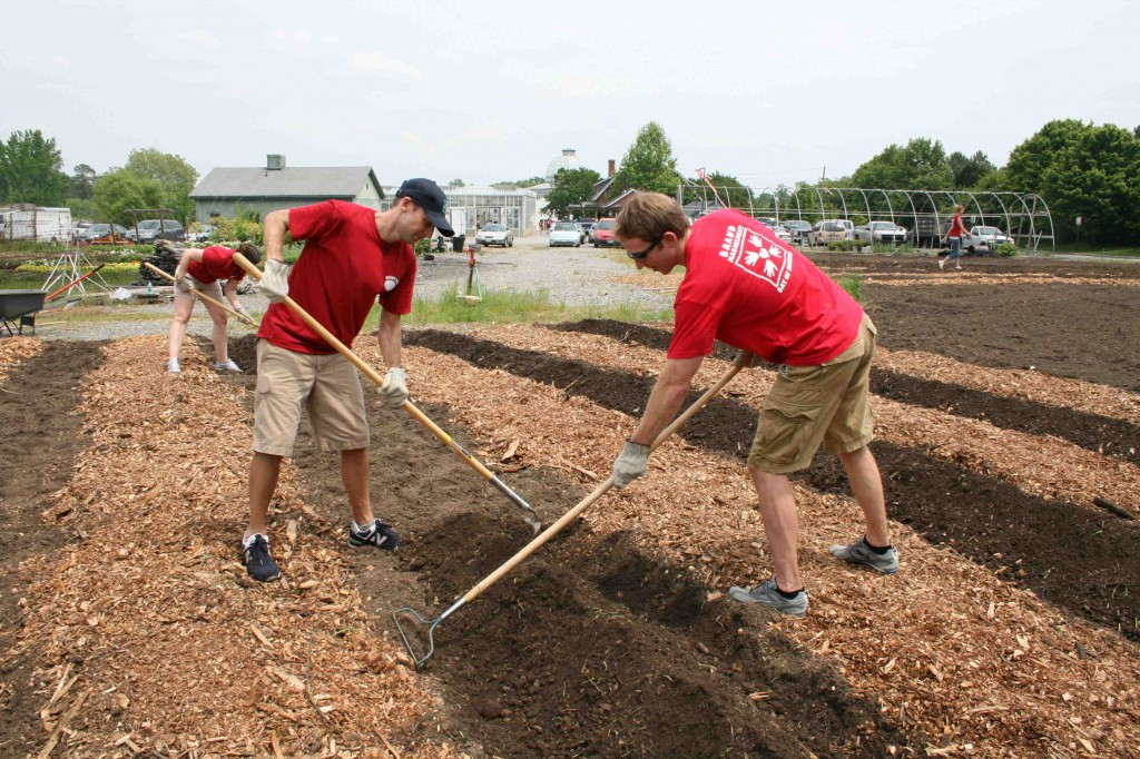 "One group of Altria volunteers mulched pathways, ""hilled"" beds, and seeded summer squash."