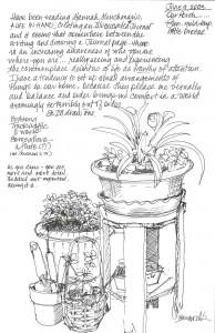 Nature journal entry by  teacher Susie Kowalik