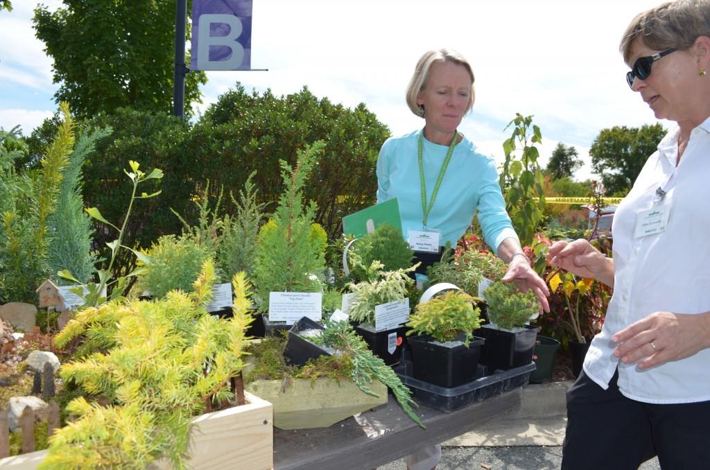 Garden volunteers Nancy Penick and Ellen Edmonds getting ready for Friday & Saturday's plant sale.