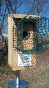 Bluebird Nest Box 5