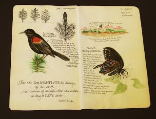 """Redwing & Swallowtail"" by Roseanna H Haaland, TN"