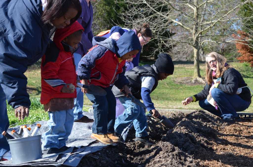 Children's Garden Manager Kelly Riley, teaching the Children how to plant potatoes.
