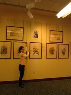 Our talented and capable museum studies intern Erica Borey poses with the Reichenbachia display that she curated.