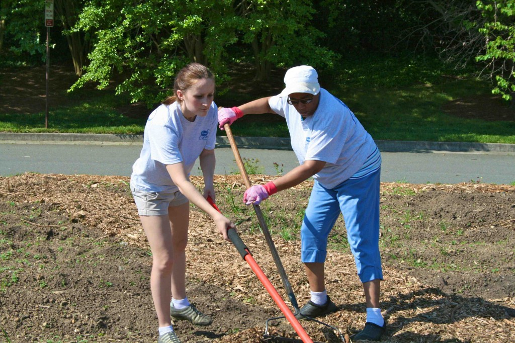 Shawn Embrose (left) and a partner spread mulch on new pathways.