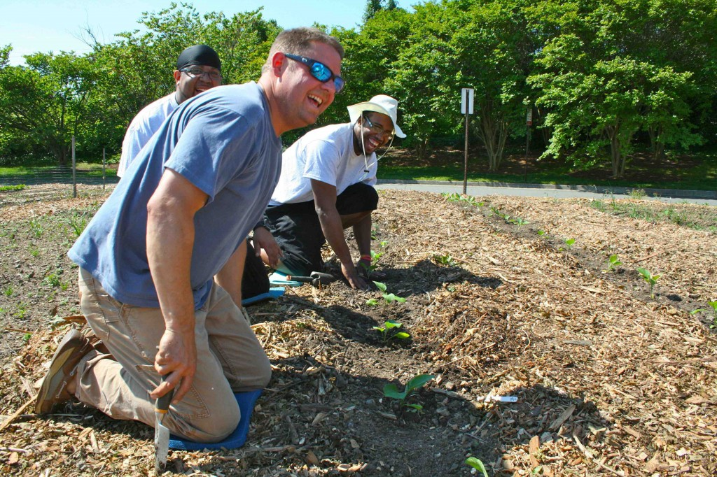 These Kroger associates demonstrate how much fun they're having planting eggplant.