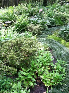 A diverse collection of shade-loving perennials complement the mossy paths.