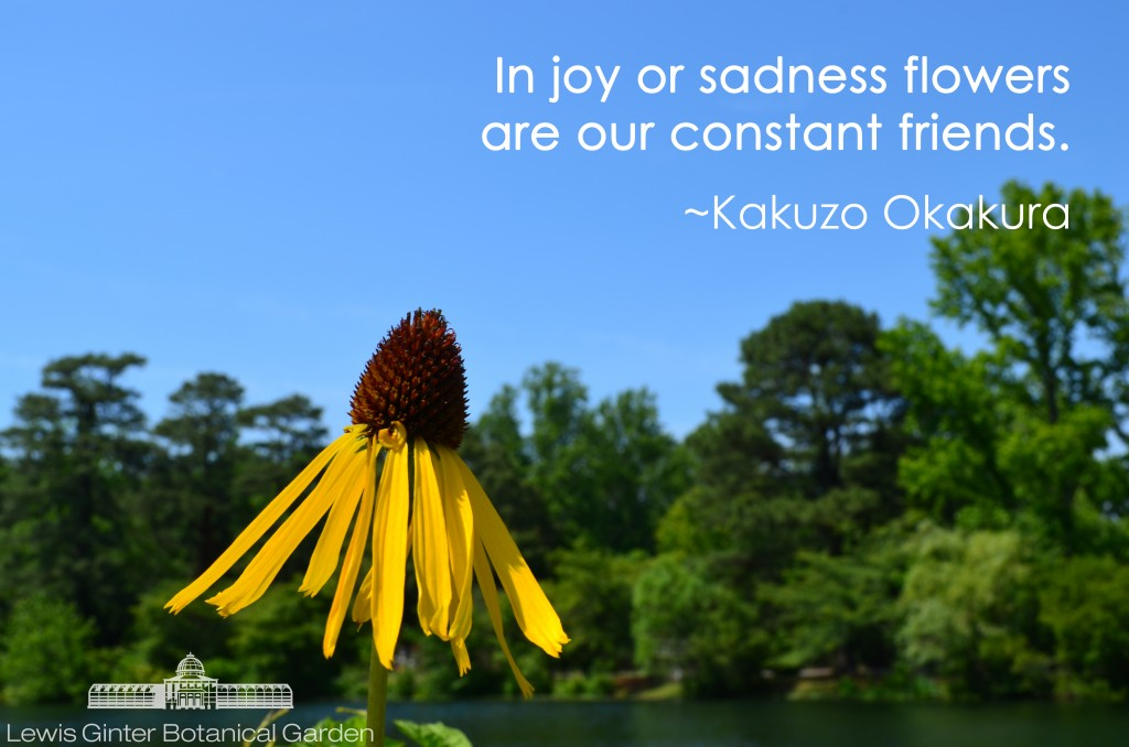 """In joy or sadness flowers are our constant friends."" ― Okakura  Kakuzō ..."