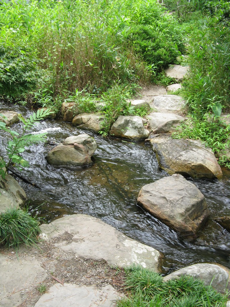 The Creek Crossing in the Asian Valley at Lewis Ginter.