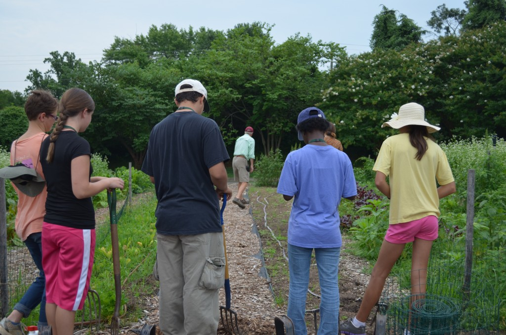 Community Kitchen Garden Coordinator, Brian Vick, instructing the Youth Service Volunteers on turning over a bed.