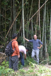 McGraw and his students in the bamboo. Photo by Grace Chapman.