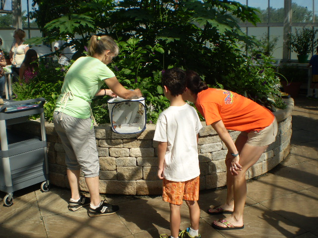 Jane Cramer, Assistant Butterfly Curator, and visitors during a butterfly release.