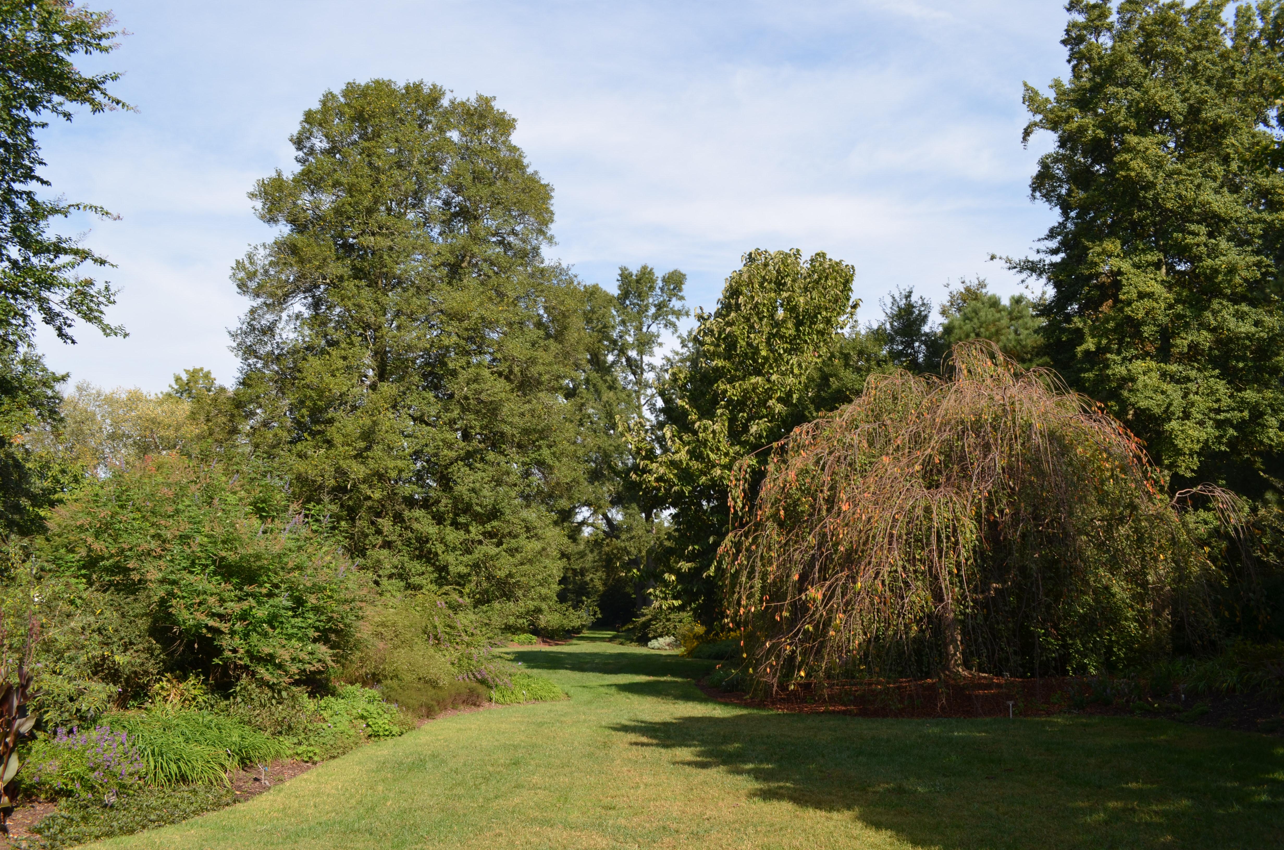 Flagler Garden Lawn Lewis Ginter Botanical Garden