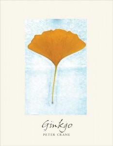 ginko book