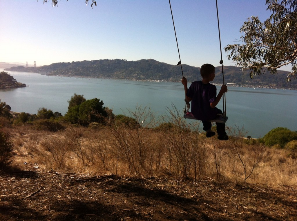 My son on the swing at the Hippy Tree.