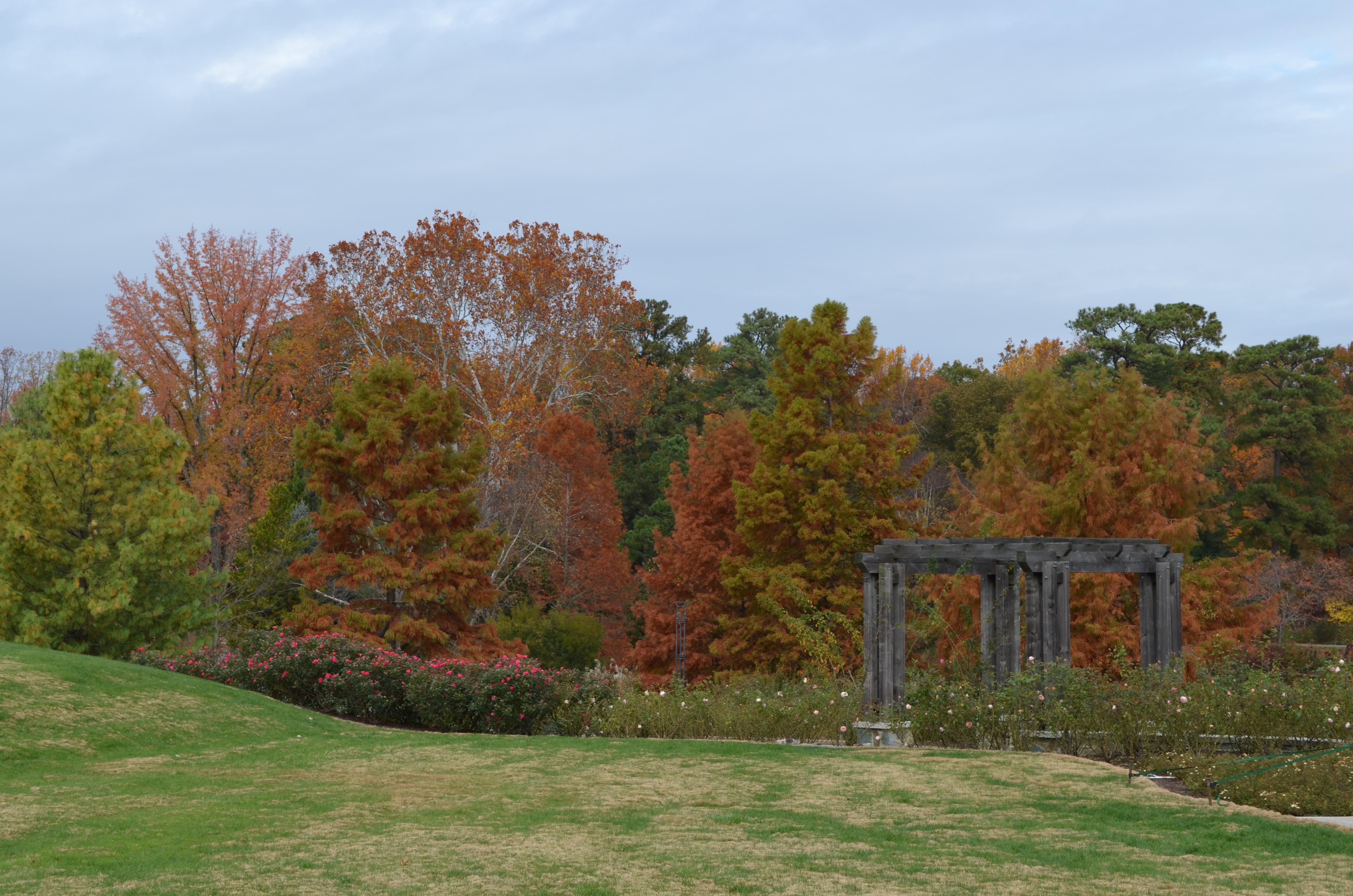 Rose Garden Lawn at Lewis Ginter Botanical Garden