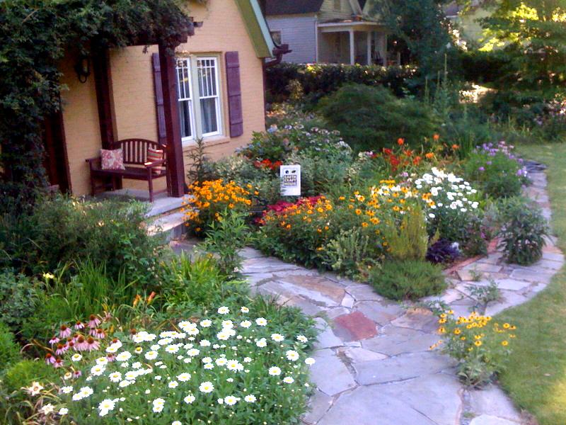 a native plant garden