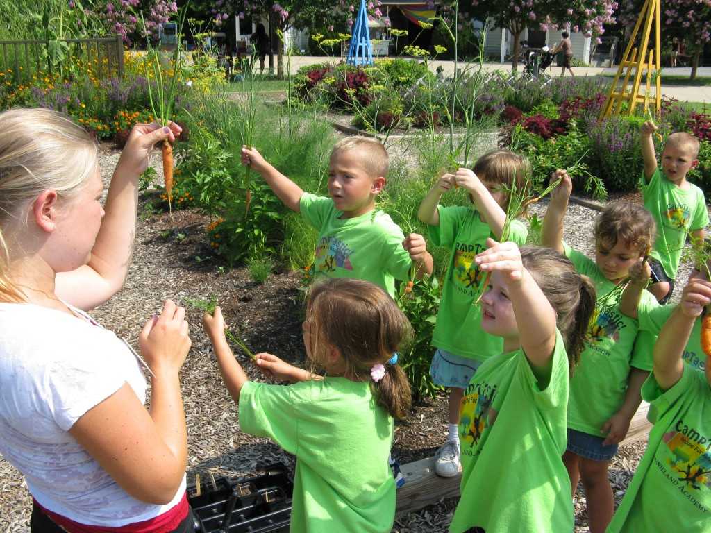 teaching about growing carrots