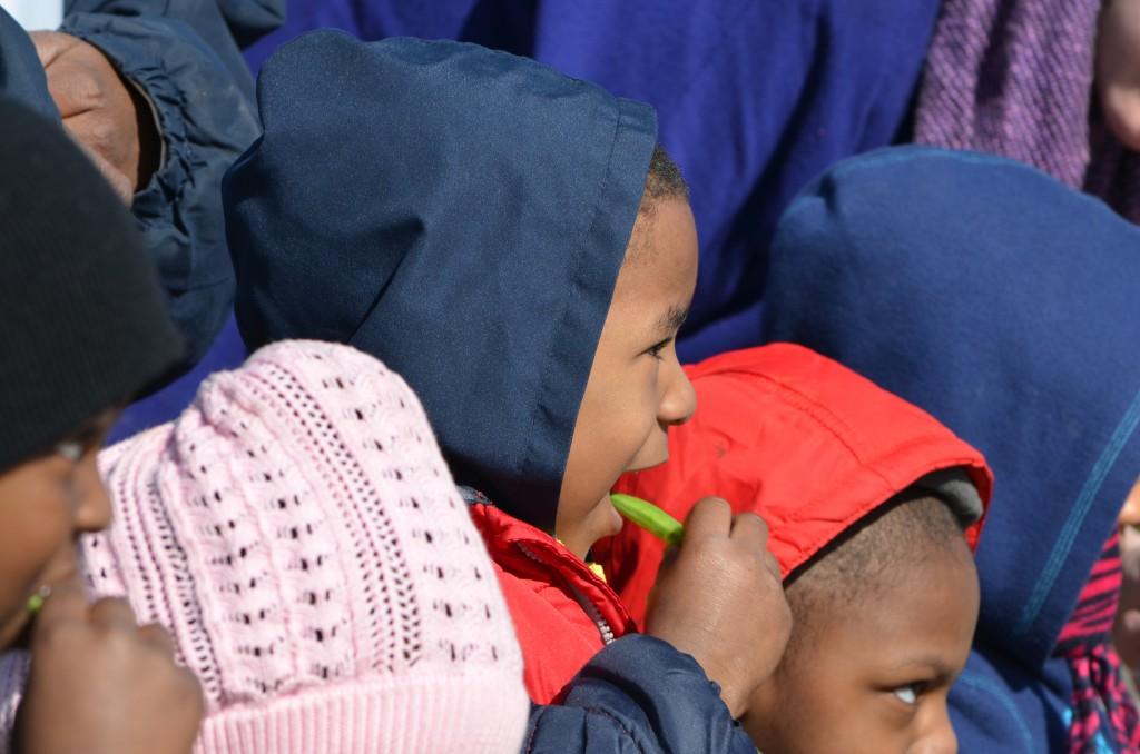 Children  eating sugar snap peas in the Community Kitchen Garden