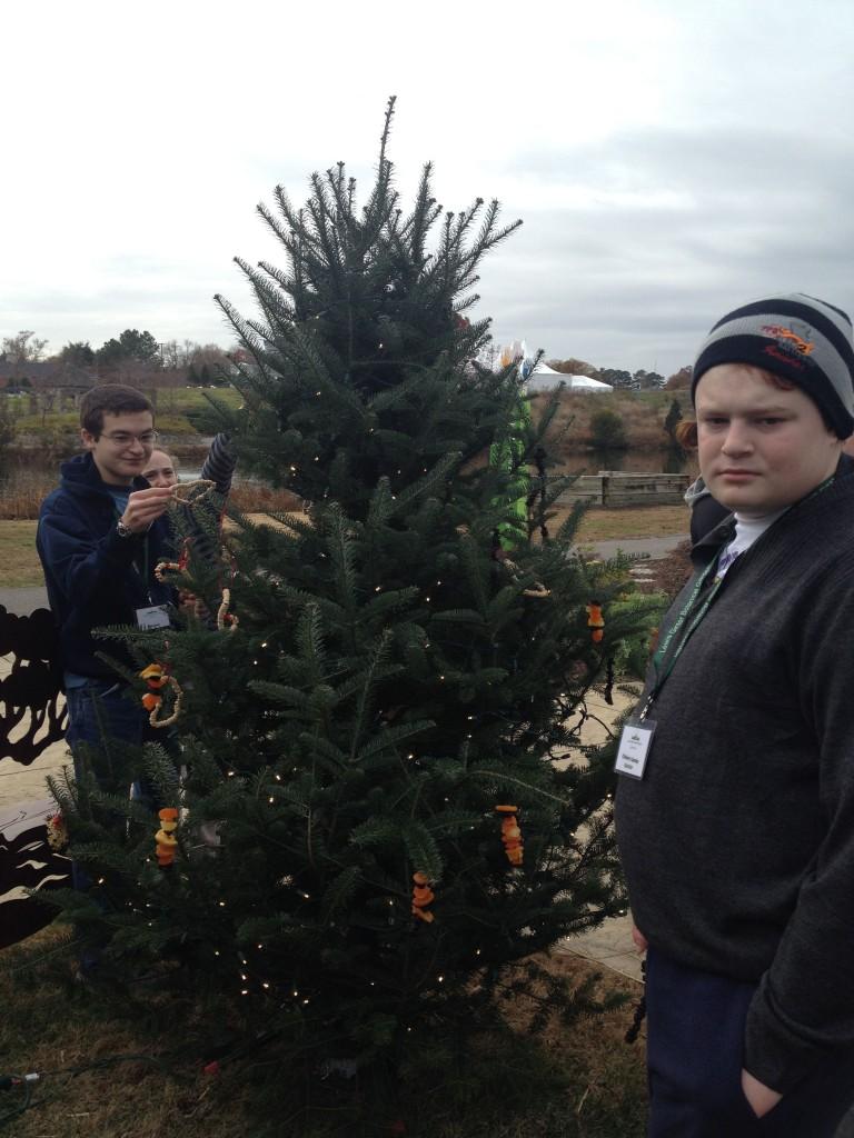 decorating the Children's Garden Wildlife Tree.