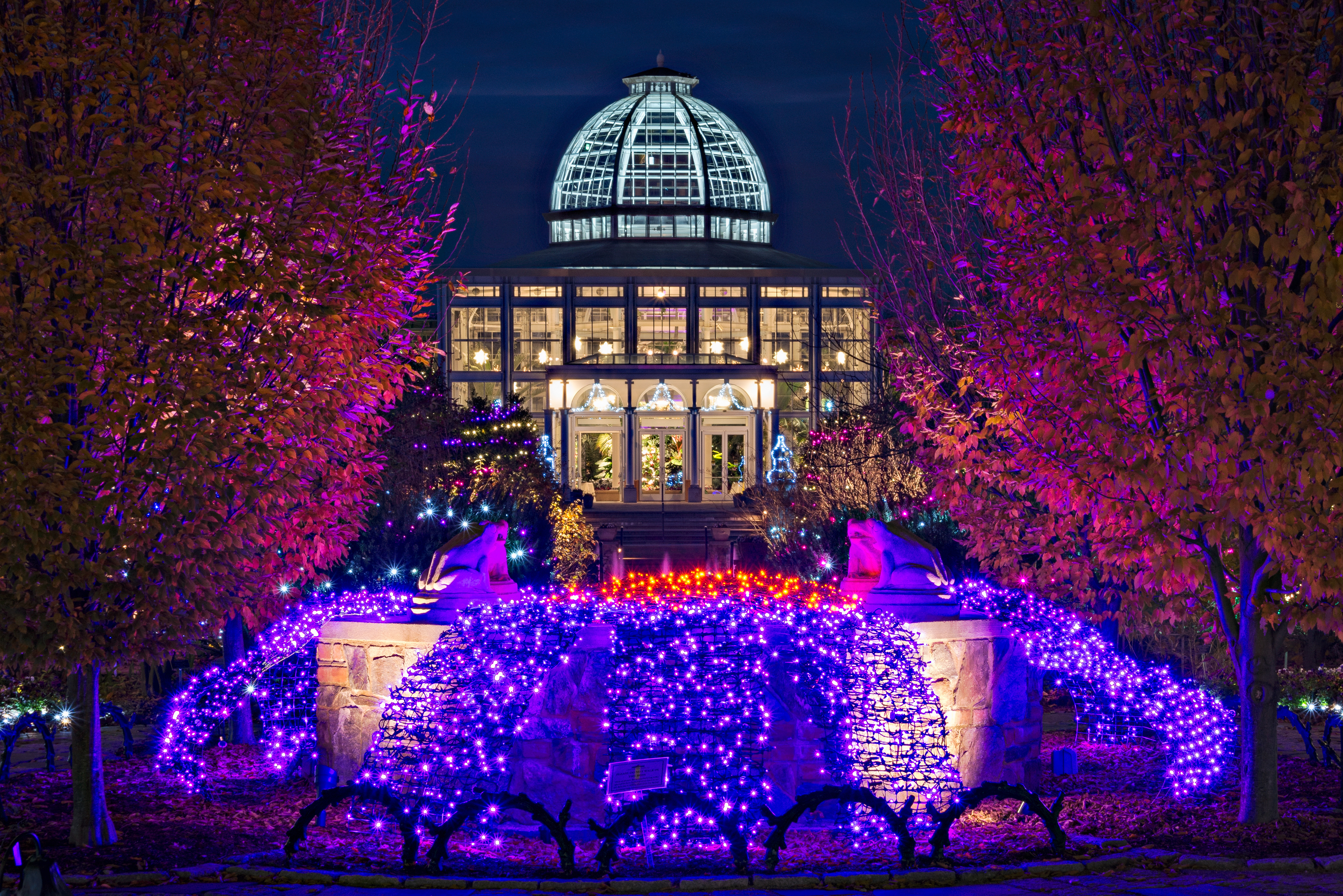 An evening entwined with nature lewis ginter botanical garden Lewis ginter botanical gardens