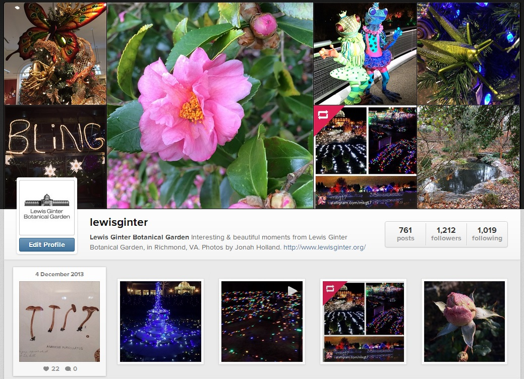 Instagram LewisGinter