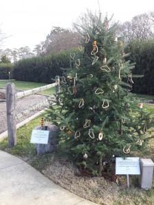 The Wildlife Tree at Lewis Ginter Botanical Garden
