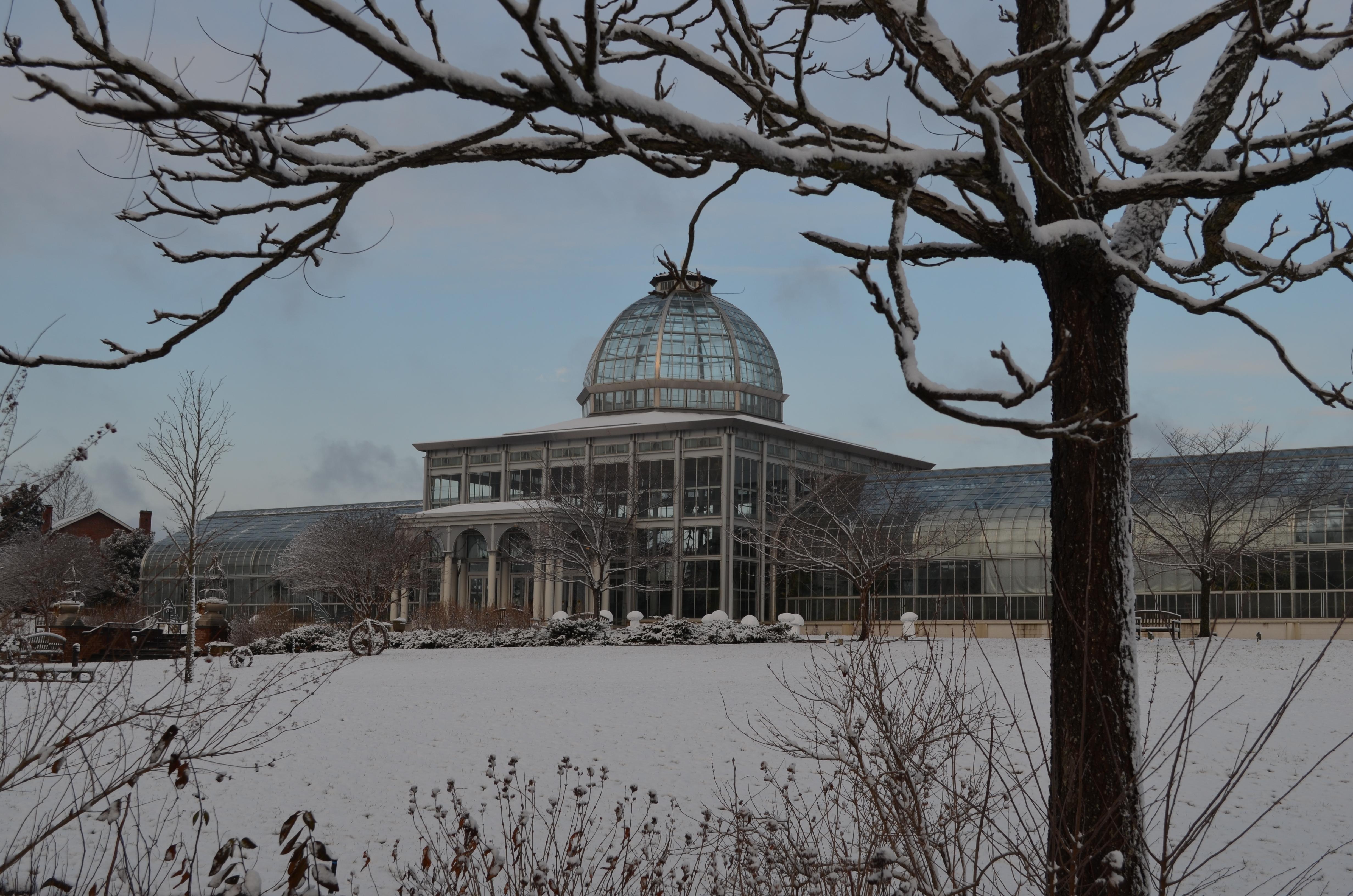 Winter Wonderland At Lewis Ginter Botanical Garden Lewis Ginter Botanical Garden