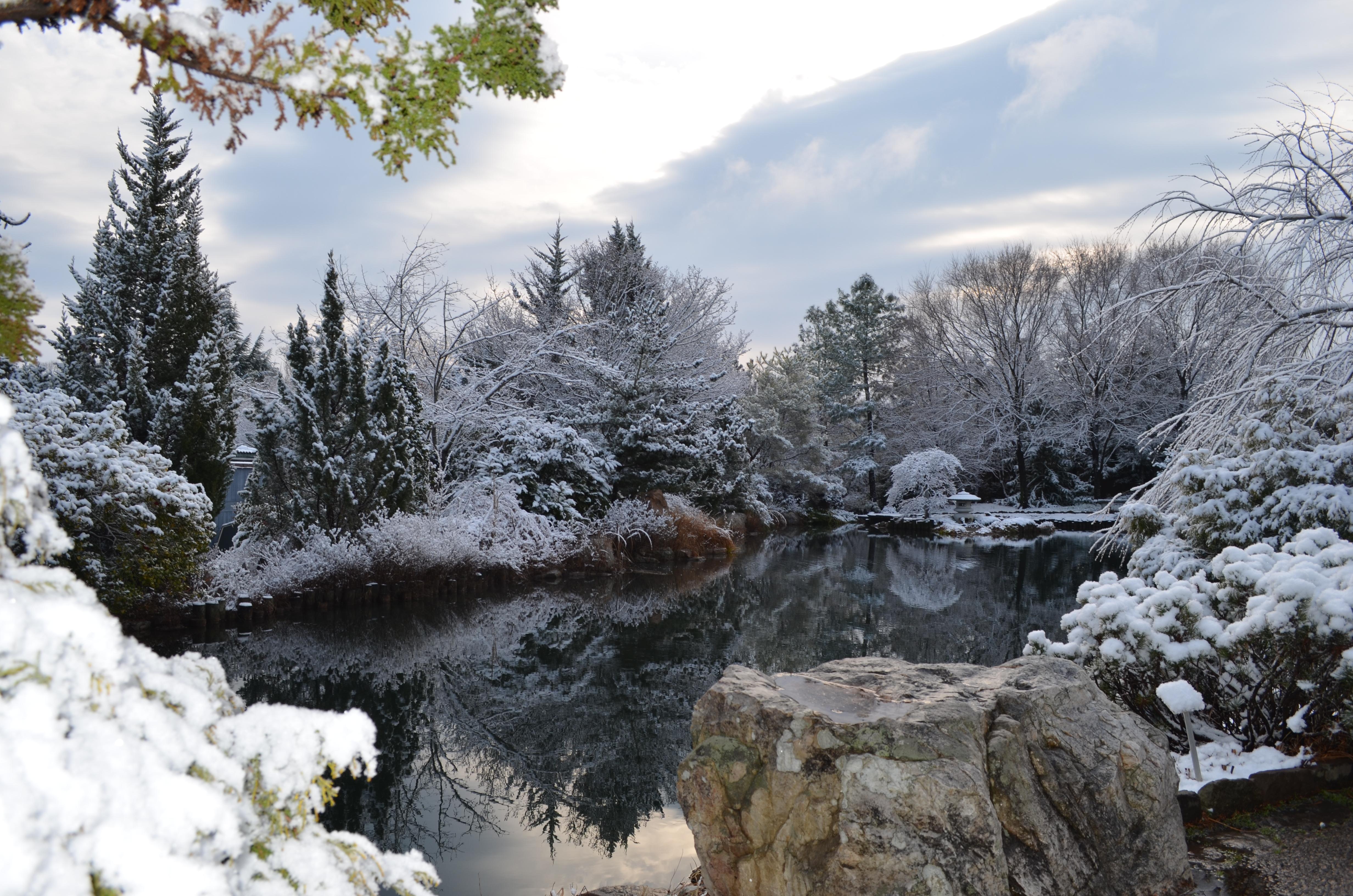 winter wonderland at lewis ginter botanical garden