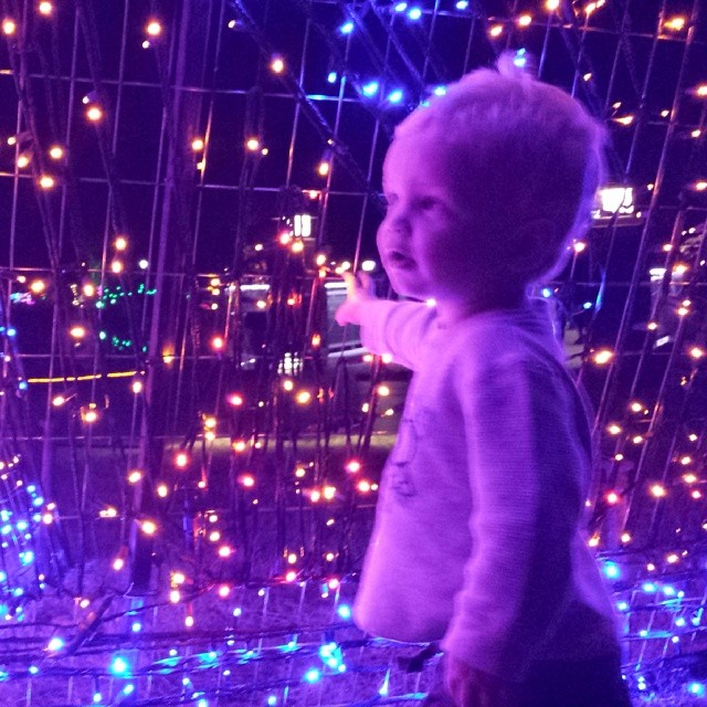 Second prize winner Bill Farrar took this photos of his son taking in all the lights.