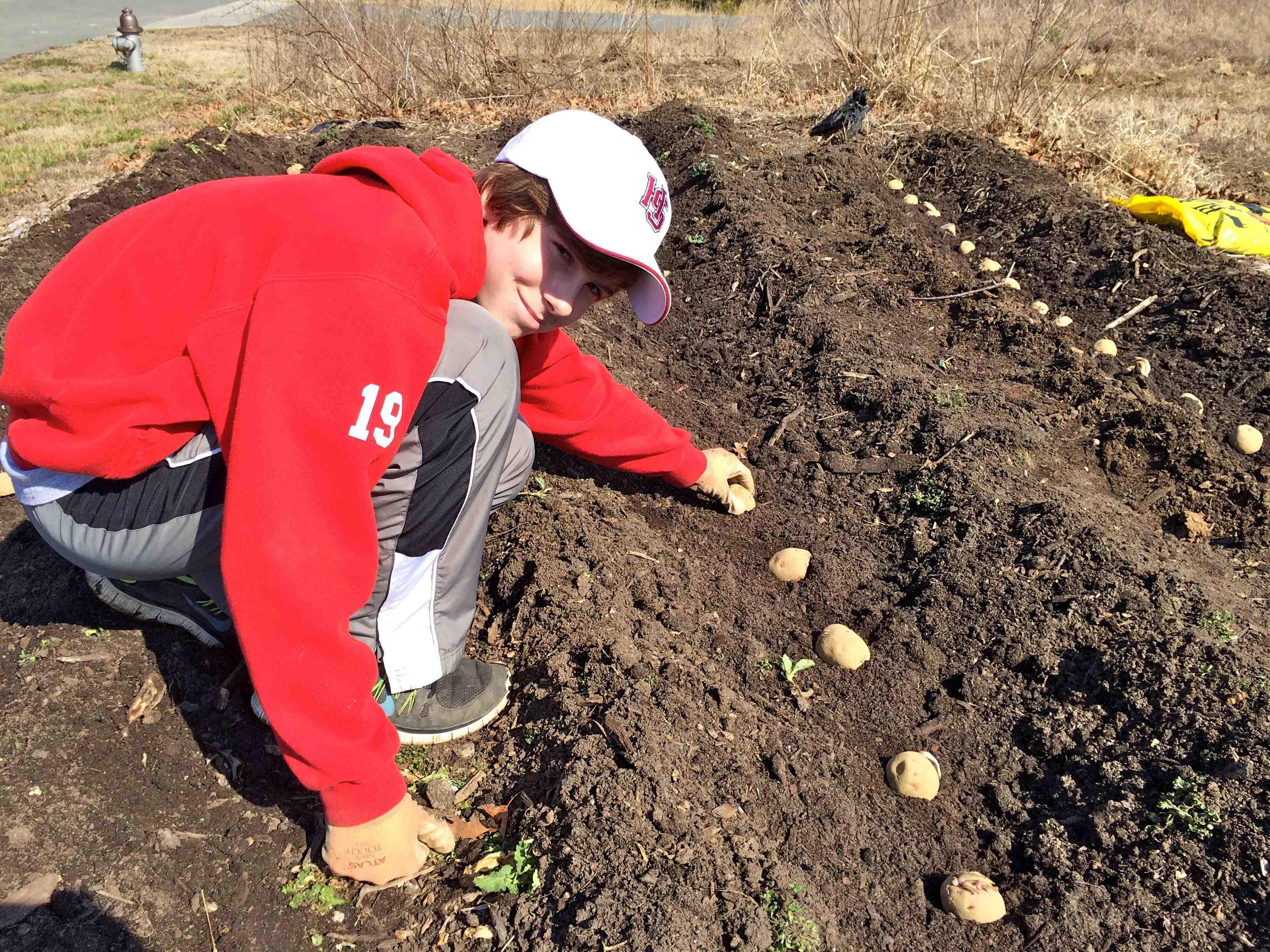 Community Kitchen Garden Look Back Spring Forward