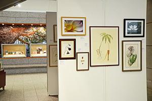 Library of Virginia Art Exhibit